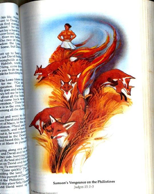 firefox-origenes